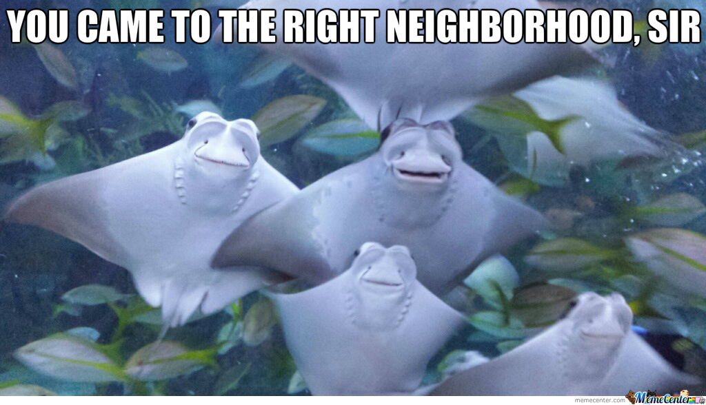 The Right Neighborhood