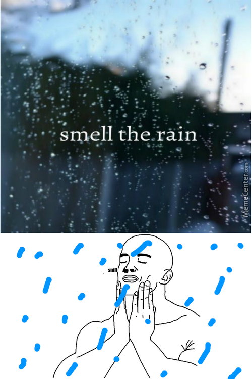 The Smell Is Called Petrichor