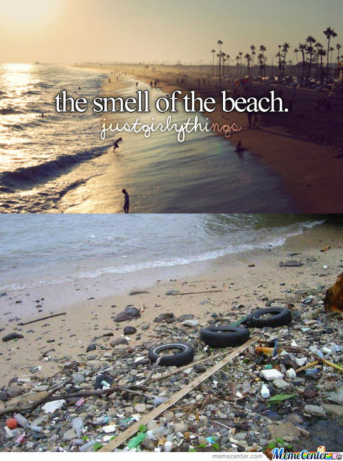 The Smell Of The Beach