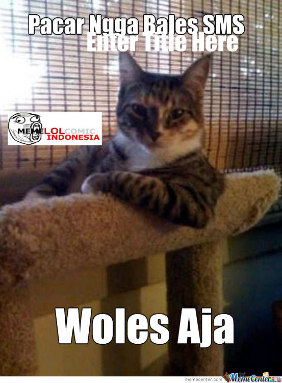 The Woles Cat