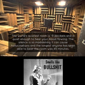 The World\'s Quietest Room by boom - Meme Center