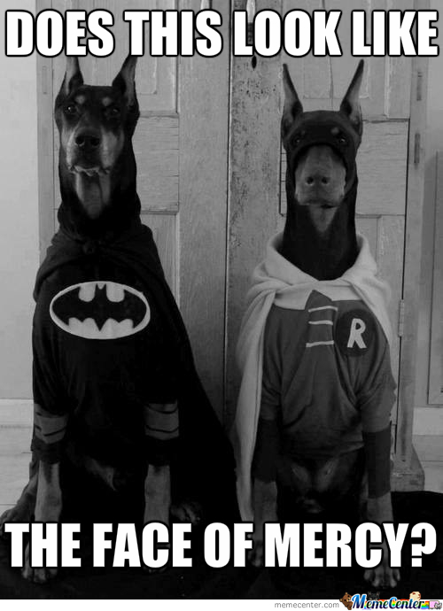 They Are The Heros Gotham Deserves