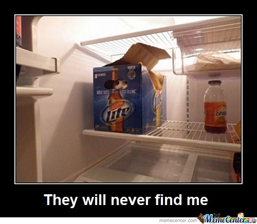 They Will Never Find Me