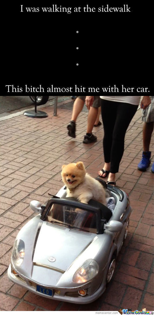 This Bitch Almost Hit Me With Her Car