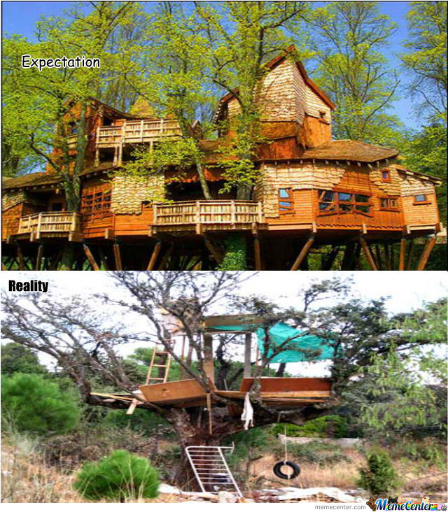 This Is My Expectations When I Building A Tree House.