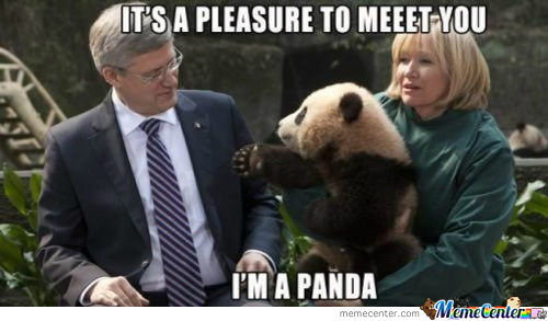 This Is My Prime Minister....he Probably Kill The Panda...