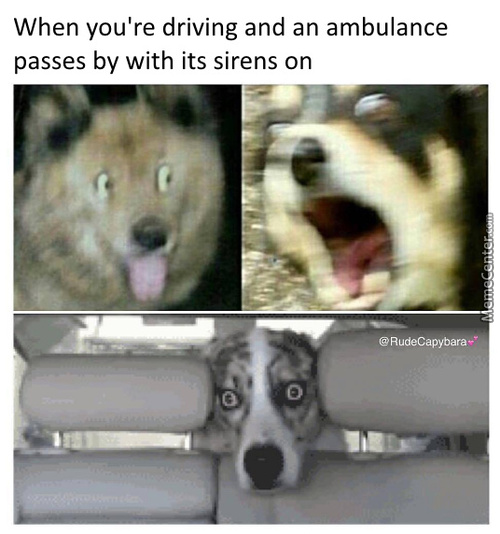 Time To Drift Into Maximum Overbork