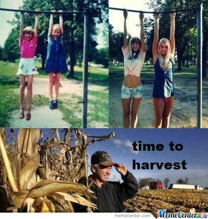 time to harvest_o_931753 harvest moon memes best collection of funny harvest moon pictures,Harvest Moon Meme