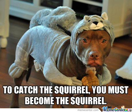 To Catch The Squirrel, You Must Become The Squirrel