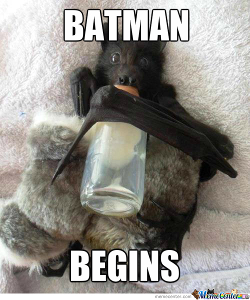 To The Batcrib!