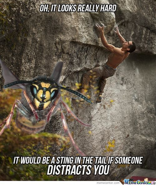 Trolling: Wasp Style