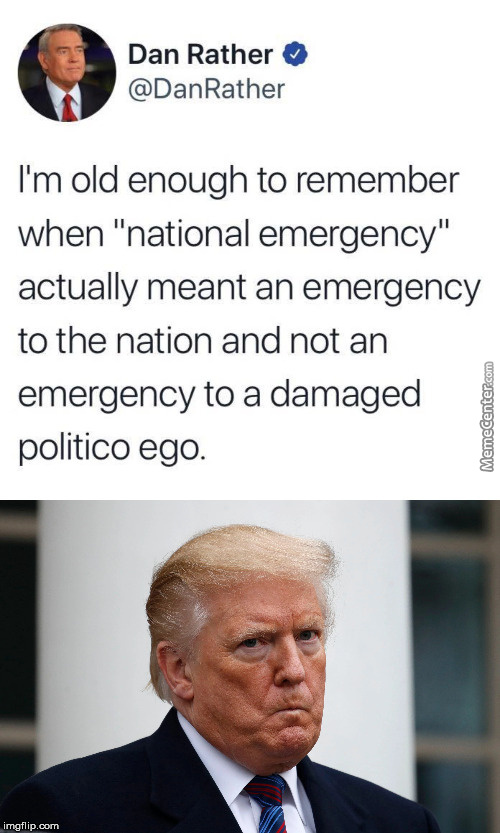 Trump Is The National Emergency...