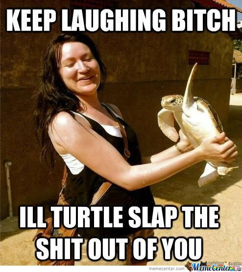 Turtle Funny