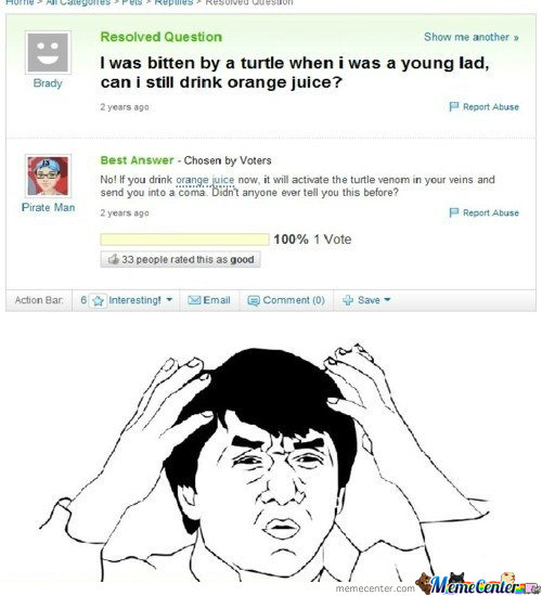 Turtle Memes. Best Collection of Funny Turtle Pictures