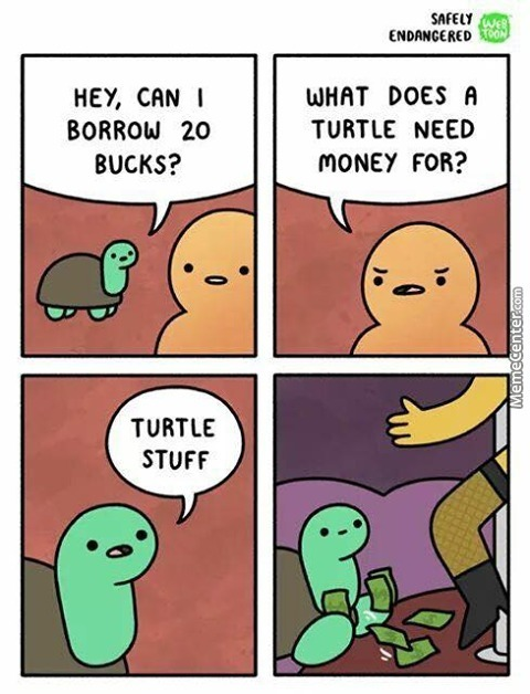Turtles Don't Do That