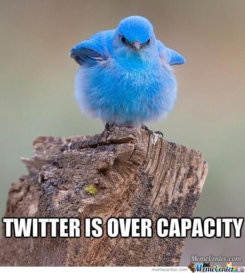 Twitter Is Overloaded!