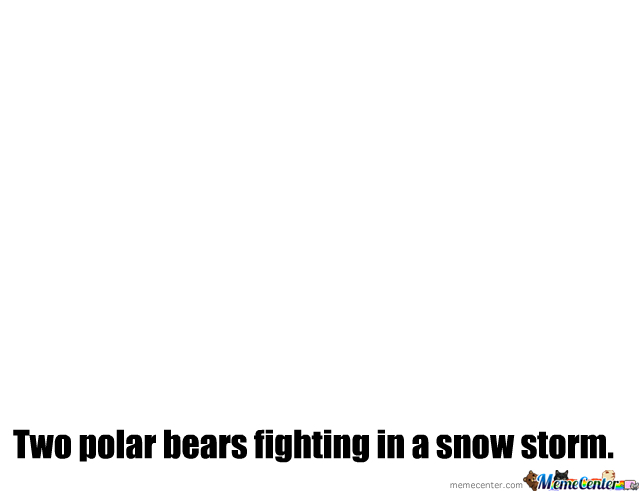 Two Polar Bears Fighting In A Snow Storm.