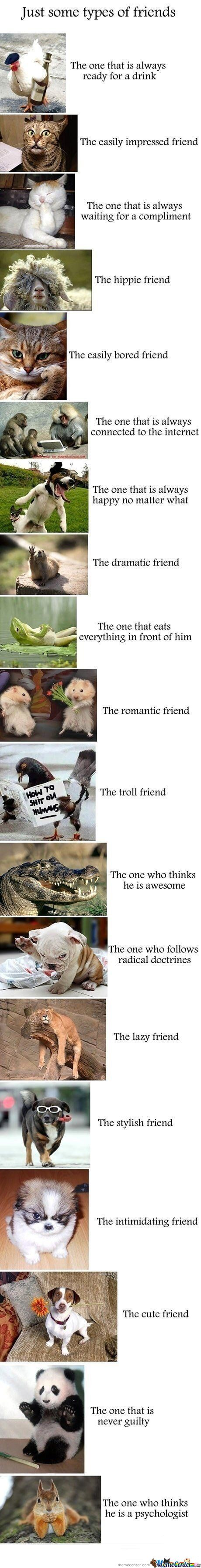 Types Of Friends (Sorry For Long Post)