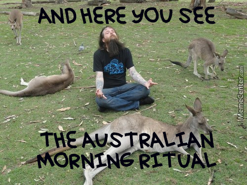 Typical Morning In The Land Down Under