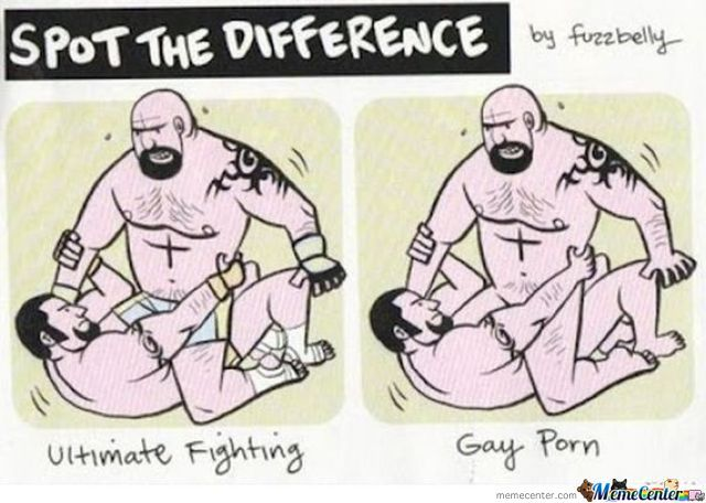 from Terry gay ultimate fighting