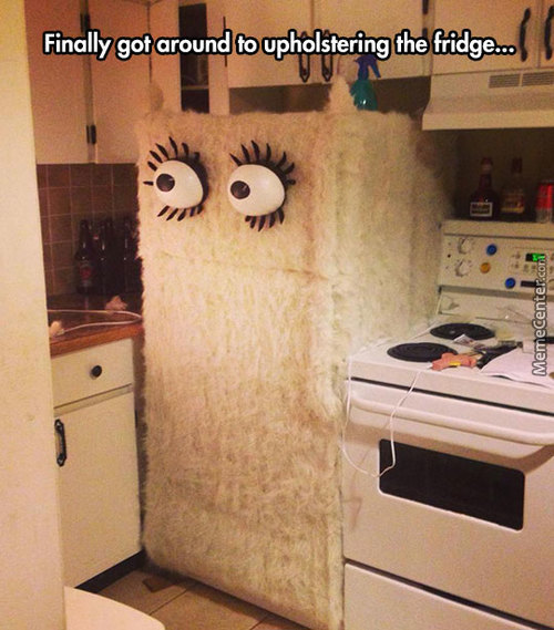 Upholstered Fridge