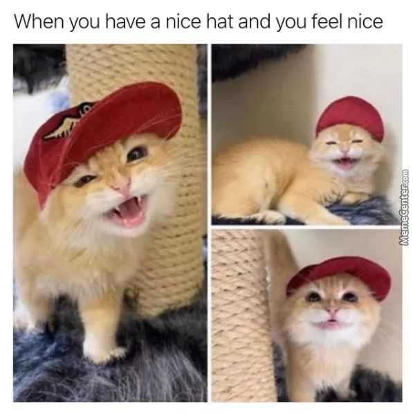 Very Lovely Hat