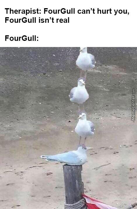 Wait 'Till They Get A Load Of Four Gull
