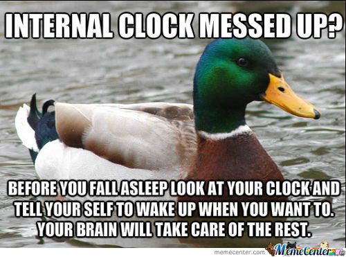 Wake The Duck Up With Brain Power!
