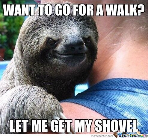 walk_o_1180034 walk memes best collection of funny walk pictures,Walking Meme