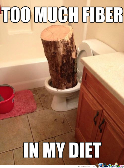 Was This Joke Really Worth Putting A Log In Your Toilet