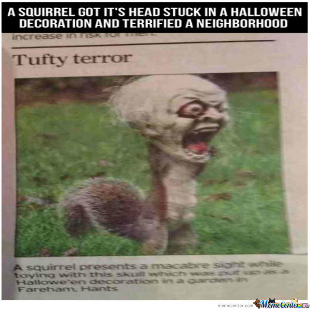 watch out we got a evil squirrel over here_o_849486 watch out, we got a evil squirrel over here by unknownjedi meme