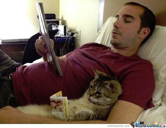 Image result for chilling with cat