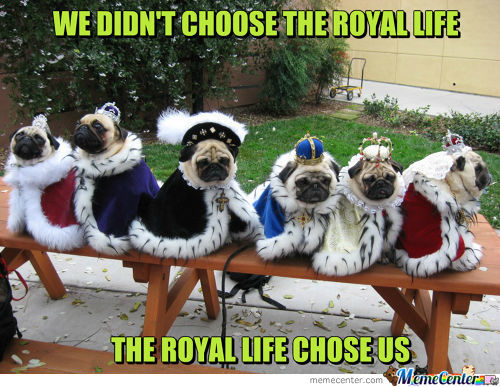 We Didn't Choose The Royal Life