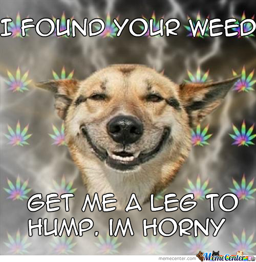 Weed Makes You H0Rny.