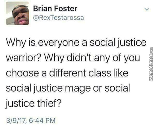 Well They Kinda Are Social Justice Thieves