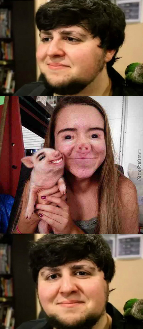 What A Horrible Faceswap!
