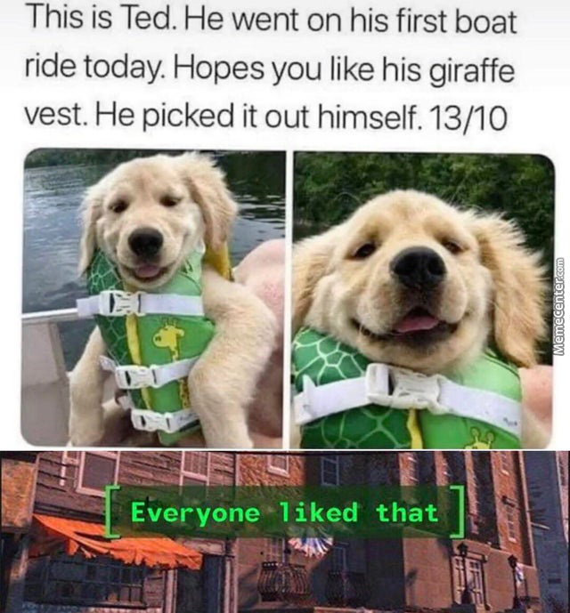 What A Wholesome Doggo.