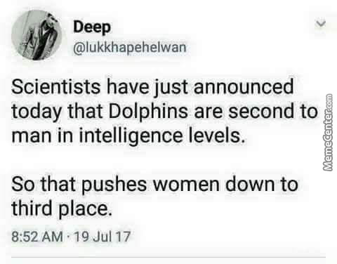 What About Female Dolphins?