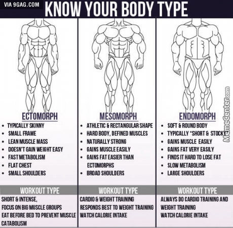 What\'s Your Body Type? by aaron990 - Meme Center