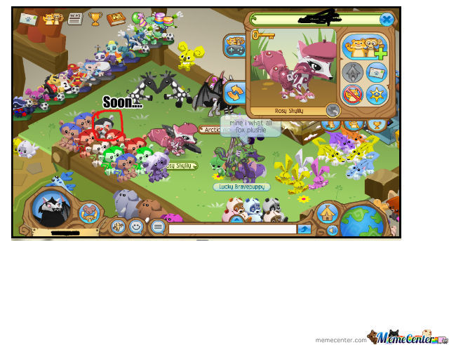 What I Saw On Animal Jam