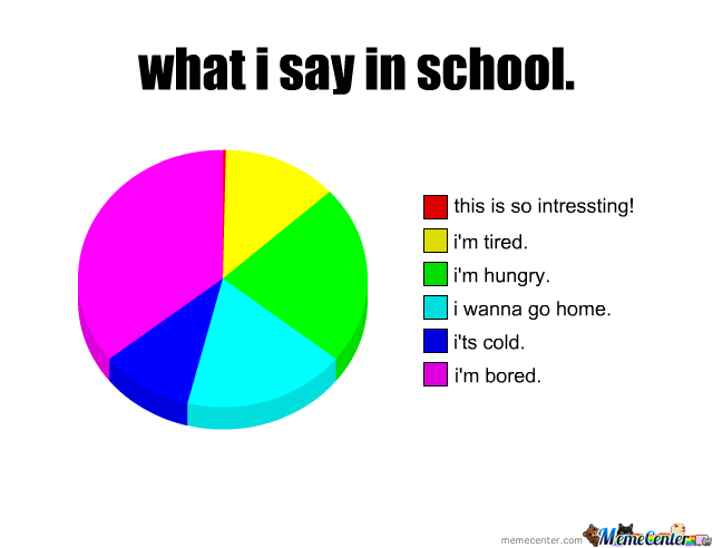 What I Say In School