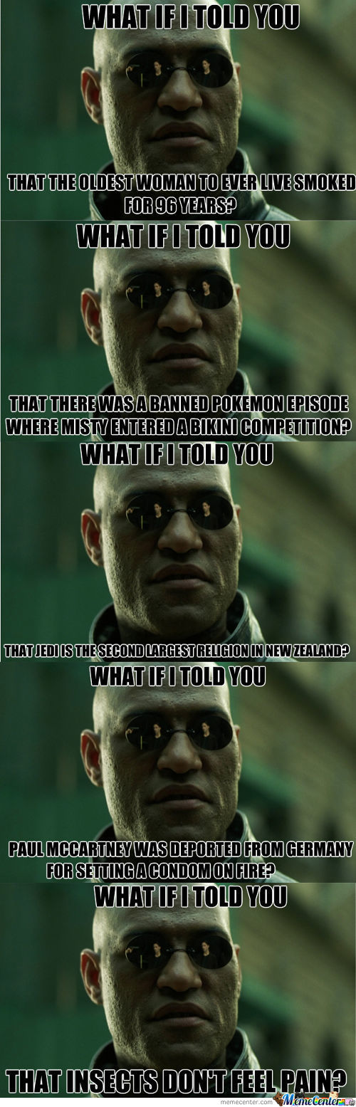 What If I Told You Facts #2