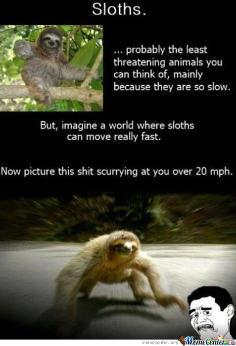 What If Sloths Could Run