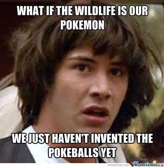What if the wildlife is our pokemon?
