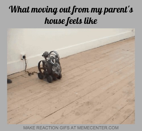 what moving out from my parents house feels like_gp_1248749 move out memes best collection of funny move out pictures,Moving Out Meme