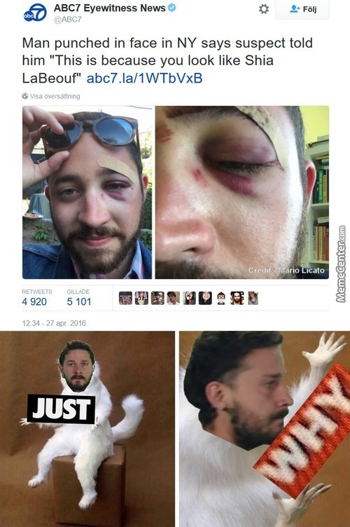 What The Hell Did Shia Ever Do To You?