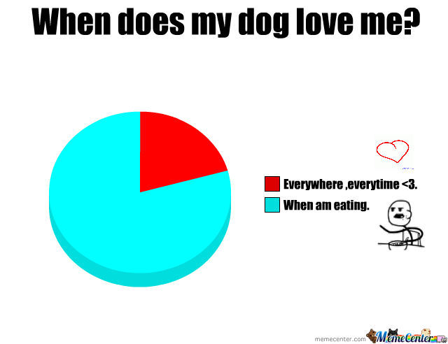 when does my dog love me_o_1295043 when does my dog love me? by tusia meme center