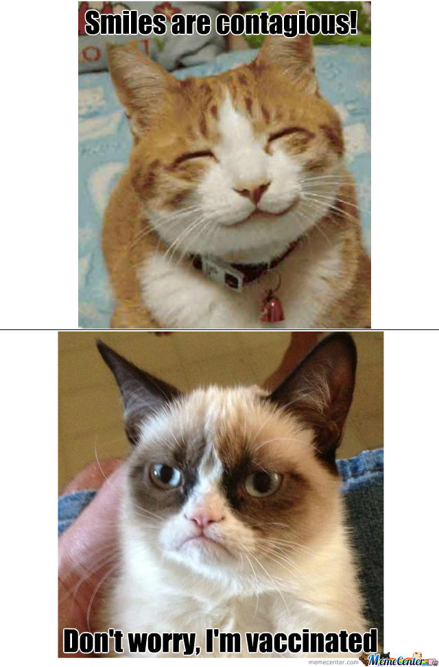 When Grumpy Cat And Smile Cat Meets by catalyxx - Meme Center