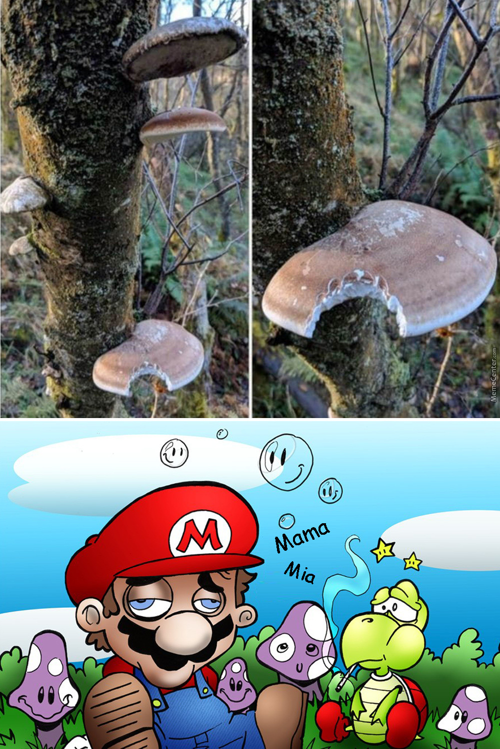 When Mario Was Still Learning About The Mushroom Kingdom