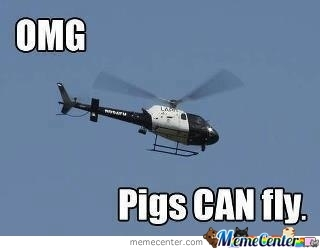 When Pigs Fly By Recyclebin Meme Center